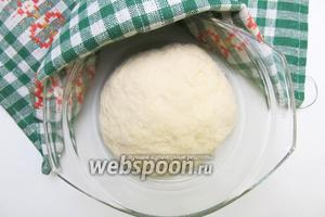 Готовое тесто выкладываем в ёмкость, смазанную оливковым маслом. Накрываем полотенцем и отправляем в тёплое место на 30-40 минут.