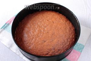 Дайте бисквиту полностью остыть. Снимите бисквит с пергамента и уложите на блюдо для торта.