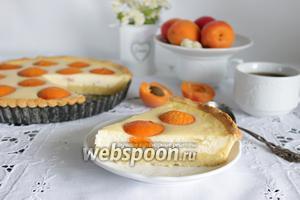 Пирог с абрикосами из творожного теста