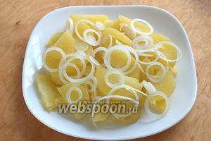 Нарежьте картофель ломтиками, лук — тонкими колечками. Разложите на сервировочную тарелку или блюдо!