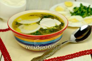 Суп из ревеня в мультиварке