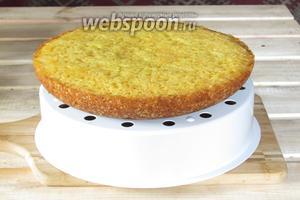 После сигнала мультиварки достать кекс с помощью чаши для варки на пару. Дать кексу остыть и посыпать сахарной пудрой, можно помазать помадкой. Морковный кекс в мультиварке готов. Подавать к чаю, приятного аппетита!