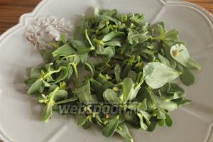 У портулака руками отрывать листочки и выложить сразу на тарелку, в которой будете подавать салат.