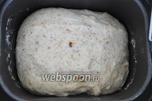 Тесто готово его можно вынуть из хлебопечи.