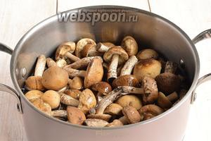 Грибы перебрать от мусора, промыть. Залить водой, довести до кипения и отварить в течении 15 минут.
