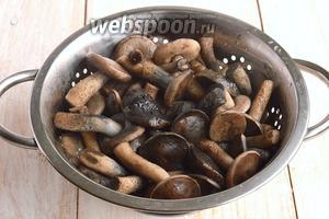 Слить воду с грибов.