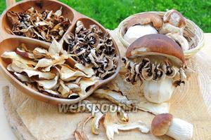 Белые грибы сушёные