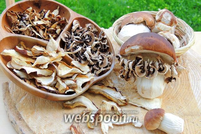 Фото Белые грибы сушёные