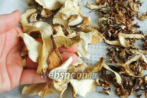 А вот так выглядят наши белые грибы. Вес так же уменьшается в 10 раз. Белый гриб должен быть хорошо сухим, может ломаться, но не в крошку.