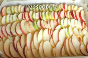 Форму застелить пергаментом, вылить тесто и разровнять. Сверху выложить нарезанные ломтиками яблоки. Яблоки можно выкладывать произвольно и чем больше тем лучше. Они должны быть плотным слоем, лучше даже внахлёст.