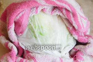 Время для капусты вышло — вынимаем её из микроволновки заворачиваем прямо в пакете в махровое полотенце. Даем полежать и пропотеть, пока закончим приготовление начинки.