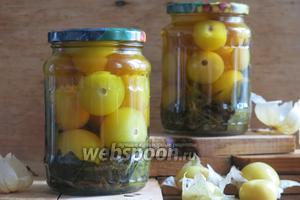 Маринованный овощной физалис на зиму