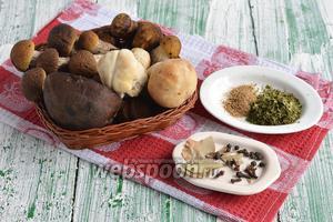 Для приготовления грибного порошка на зиму нам понадобятся лесные грибы, лавровый лист, перец чёрный горошком, гвоздика, петрушка сушёная, кориандр молотый.