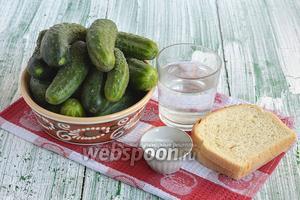 Для приготовления малосольных огурцов на белом хлебе нам понадобится белый хлеб, огурцы, вода, соль.