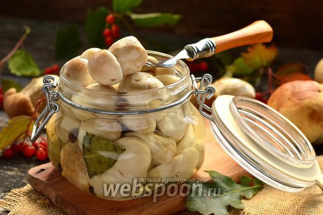 Фото Белые маринованные грибы
