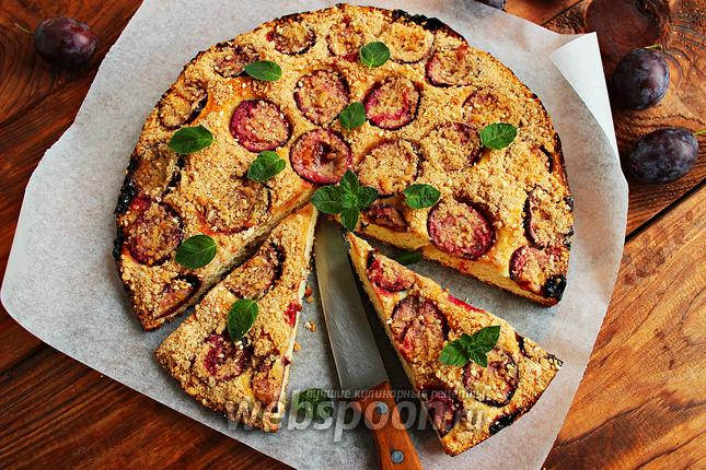 Фото Йогуртовый пирог со сливой и штрейзелем