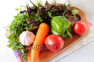 Для приготовления соуса нам понадобятся: помидоры, сладкий перец, морковь, чеснок, соль, сахар, кориандр, петрушка и базилик.