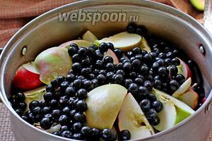 Добавить к яблокам промытую чёрноплодку. Влить воду.