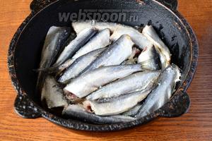 Затем выкладываем слой салаки, и хорошенько посыпаем солью. Выкладываем салаку слоями, каждый слой необходимо посыпать солью.