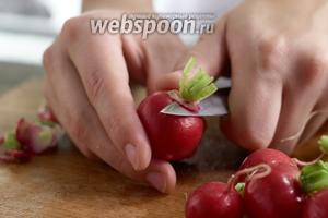 Вымойте редис и отрежьте хвостики.