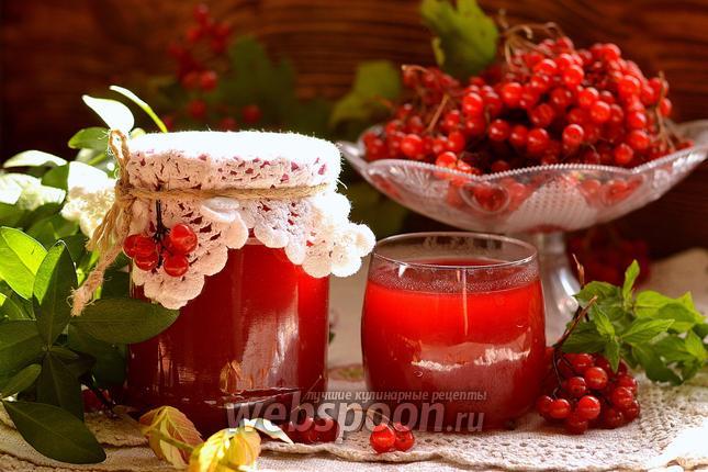 Фото Калиновый сок на зиму