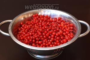 Калину помыть, очистить от черешков и испорченных ягод.