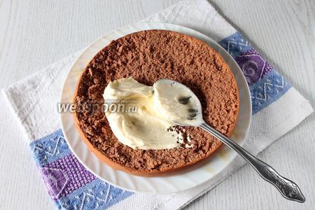 Бисквит разрежьте на три коржа и прослоите кремом, выкладывая вишню без косточек и процеженную от сиропа.