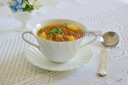 Густой суп из свинины с фенхелем