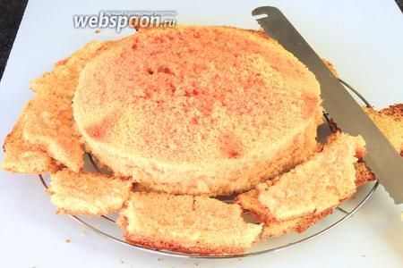 После того как бисквит остынет — острым ножом для бисквитов или хлеба с зубчиками обрезаем всю корку бисквита, кроме дна, толшиной около 1 см.