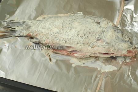Застелить фольгой противень. Затем обильно смазать карпа сметаной со всех сторон и выложить его на фольгу. В брюхо рыбы поместить зелень укропа.