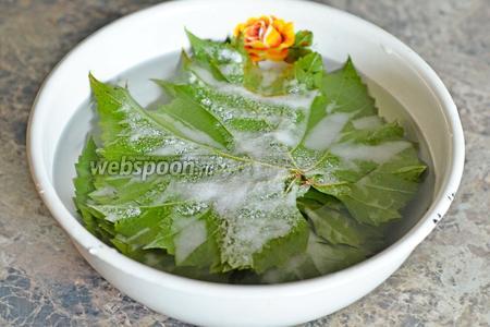 Кладём листья в большую чашку, заливаем кипятком и добавляем 1.5 ст.л. соли. Отставляем на 15-20 минут в сторонку.