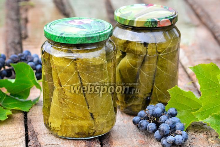Фото Солёные виноградные листья для долмы