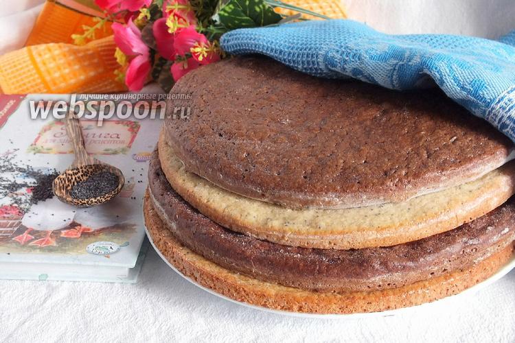 Фото Коржи для торта «Полстакана»