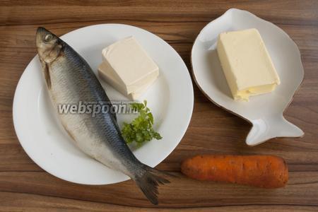 Подготовьте солёную сельдь, сливочное масло (мягкое), морковь, плавленый сыр, свежую петрушку.