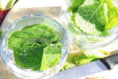 В каждый стакан кладём по 8-12 листьев мяты, в зависимости от размера.