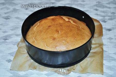 Готовый бисквит остудить в форме.
