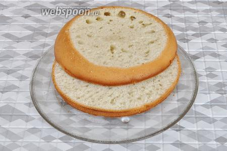 Разрезать на 2 коржа. Выпуклую верхушку торта я тоже срезала, это будет средний корж. Коржи пропитать пропиткой.