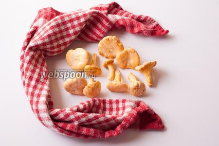 Чистим грибы щёточкой или сухой тряпкой. Под этот рецепт — ни в коем случае не мыть, грибы должны быть сухими. Это — подготовка блюда, в зависимости от количества грибов, она может отнять разное время. А вот приготовление соуса — максимум 10 минут.