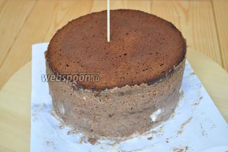 Вот так выглядит собранный торт. Можно вставить шпажку, чтобы торт не поплыл и не съехал на бок. Поставить на ночь в холод для пропитывания и стабилизации.