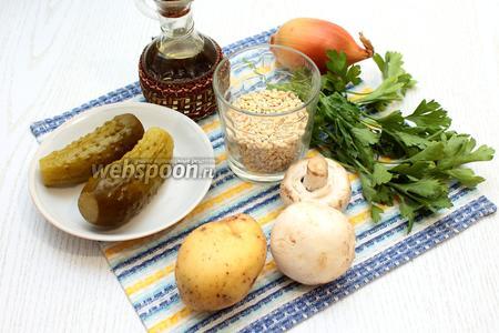 Для приготовления рассольника нам понадобятся следующие ингредиенты: грибы шампиньоны, картофель, маринованные огурцы, рассол, перловка, лук репчатый, вода, соль, лавровый лист, масло растительное и зелень петрушки.