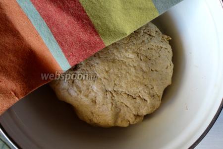 Готовое тесто перекладываем в чистую миску и поливаем масло. Закрываем кухонным полотенцем и ставим в тёплое место.