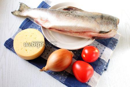 Для приготовления нам понадобятся горбуша, помидоры, сыр, лук репчатый, приправа для рыбы, соль, масло растительное (или сливочное) и майонез (можно взять сметану).