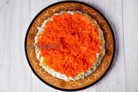 Затем раскладываем натёртую морковь. Смазываем майонезом.