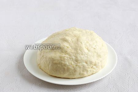Накрыть тесто тарелкой и оставить в покое на некоторое время.