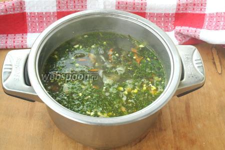 В готовый суп добавить измельчённый укроп и дать настояться 10 минут под закрытой крышкой. Суп подавать заправив сметаной. Можно сварить больше яиц и подавать суп положив в каждую порцию по половинке яйца. Приятного аппетита!