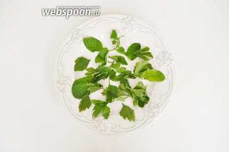 Сервируем тарелку. Выложить вымытые листья мяты и листики петрушки. Резать не стоит, достаточно просто отщипнуть листья руками.