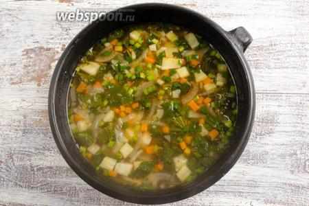 Подержать на огне 1-2 минуты. Дать настояться супу.