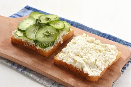 На один кусок смазанного хлеба выложить толстым слоем подготовленные огурцы.