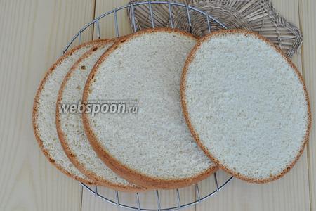 Не ранее чем через 8 часов, разрезать бисквит на 4 коржа.