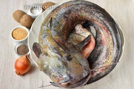 Для приготовления котлет из сома вам понадобится перец чёрный молотый, картофель, соль, лук, панировочные сухари и сом.